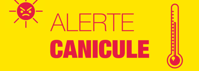 CANICULE – INFORMATION ENTRAINEMENTS